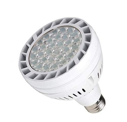 Jandy Led Lighting in US - 6