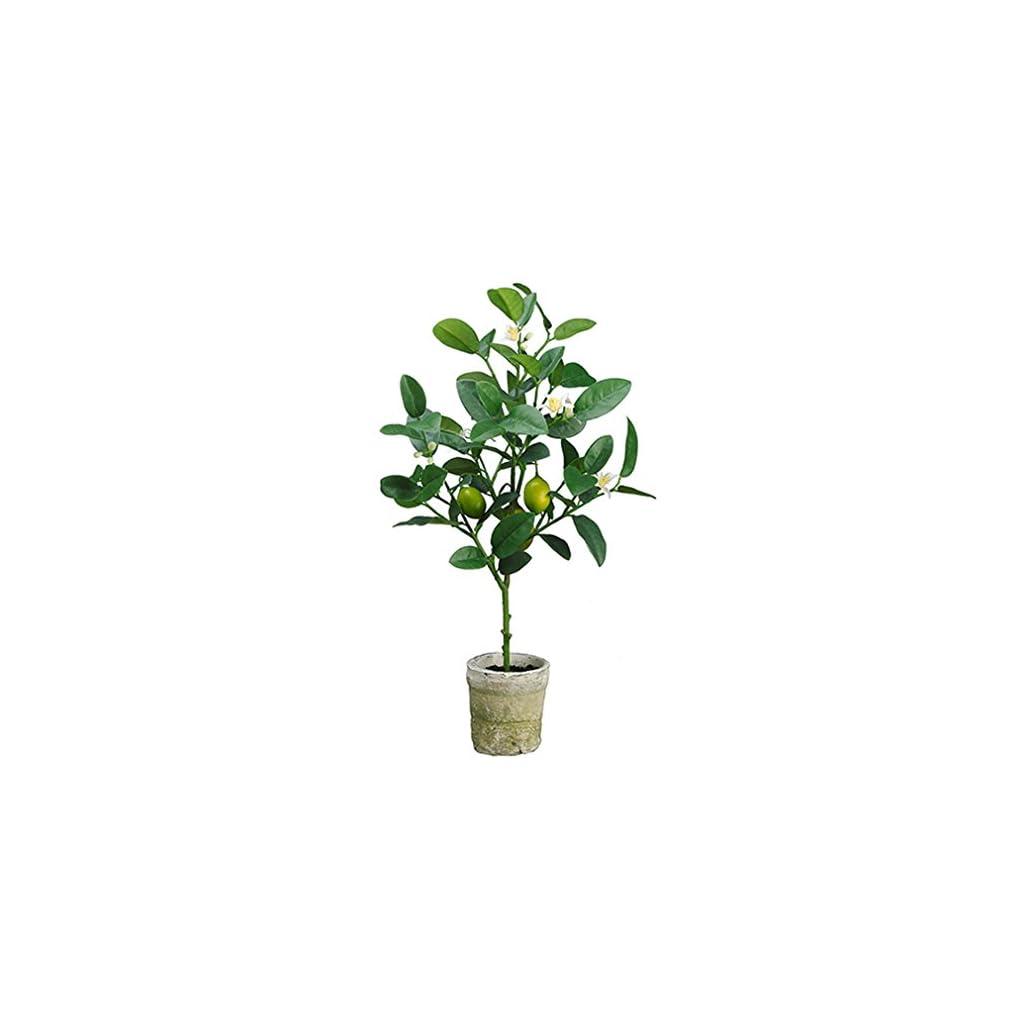 22-Lemon-Topiary-Silk-Fruit-Tree-wClay-Pot-YellowGreen-Pack-of-6