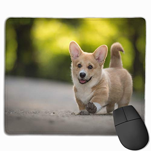 HBLSHISHUAIGE Mouse Pad Cute Corgi Rectangle Non-Slip 9.8in11.8 in Personalized Designs Gaming Rubber Mousepad Stitched Edges Mouse Mat ()