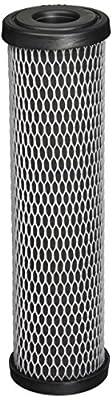 Ametek W5CIP Taste/Odor Filter Cartridge