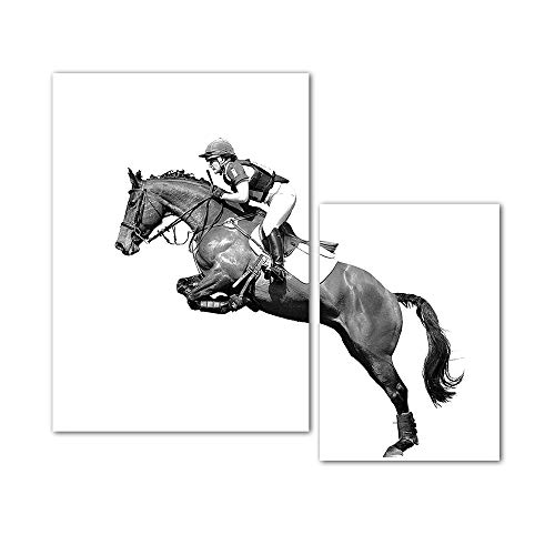 BIL-YOPIN Canvas Wall Art Equestrian Painting Prints Wall Artworks 2 Panels Horse Pictures Canvas Print Wall Décor Paintings for Home Living Room Bedroom Decoration Office Framed Ready to Hang