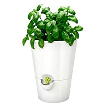 Emsa Germany: Fresh and Healthy Herbs for Weeks – Indoor Garden | Stylish self-Watering Planter, Foolproof & Easy to use | 5.1 inch | White