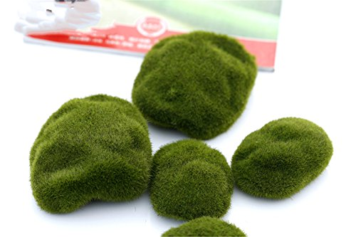 Areerataeyshop 6 pcs Natural Green Artificial Moss Decorative Crafts Micro Landscape Home Ornament Bonsai Succulent Gnomes Miniature (Club Halloween Toronto)