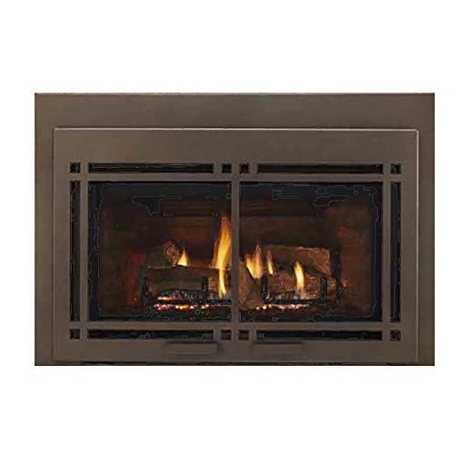 Monessen Hearth Systems Large Direct Vent Gas Insert w/IntelliFire Plus Ignition System - ()