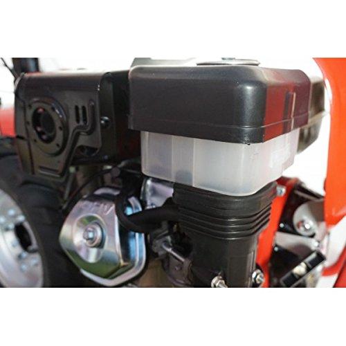 Motocultor PROFESIONAL 9CV PRO-RAPTOR 3+2 velocidades ...