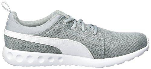 Puma Carson Mesh, Zapatillas de Entrenamiento para Hombre Gris (Quarry-puma White 09)