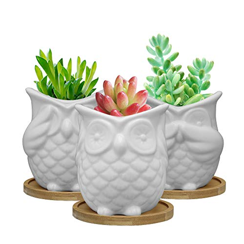 SQOWL 3.3 inch White Owl Succulent Planter Set Modern Ceramic Herb Cactus Planter Pots Indoor or Outdoor with Bamboo Tray for Owl Lovers,Pack of 3 (Bathroom Owl Accessories)
