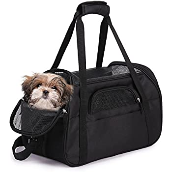 Amazon Com Mygift Mesh Small Dog Cat Lightweight Travel Carrying