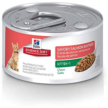 Hills Science Diet Wet Cat Food, Kitten, Savory Salmon Entrée, 2.9 oz, 24-pack