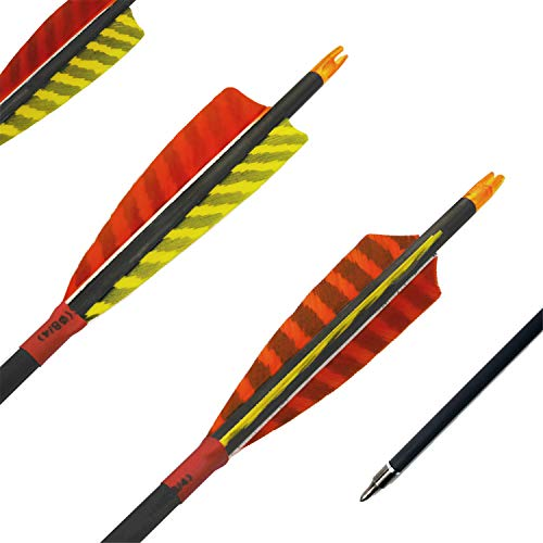 - ZHANYI Carbon Arrow Hunting Archery 340 Spine Match with 100 Grain Point Tips for Compound and Recurve Bow (29 Inch Pack of 6)
