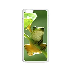 Fresh green frog Phone Case for iPhone 6