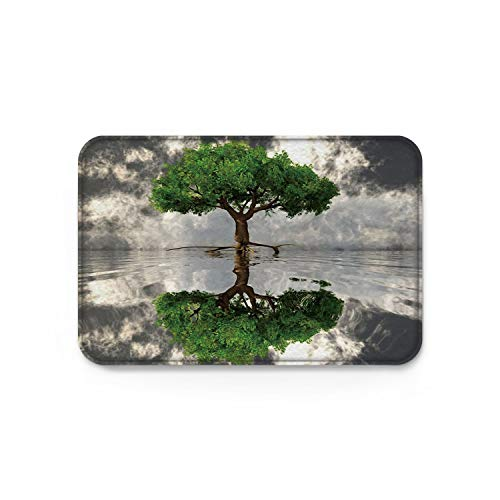 Welcome Mats Non-Skid Slip Rubber Entrance Mats Rugs Shoes Scraper Indoor/Front Door/Bathroom/Kitchen/Bedroom Green Tree of Life Water Mirror 15.7'' W by 23.6''L by Decor Love