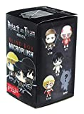 Attack on Titan Microplush Blind Box Collectible