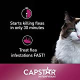 Capstar Fast-Acting Oral Flea Treatment for Cats, 6