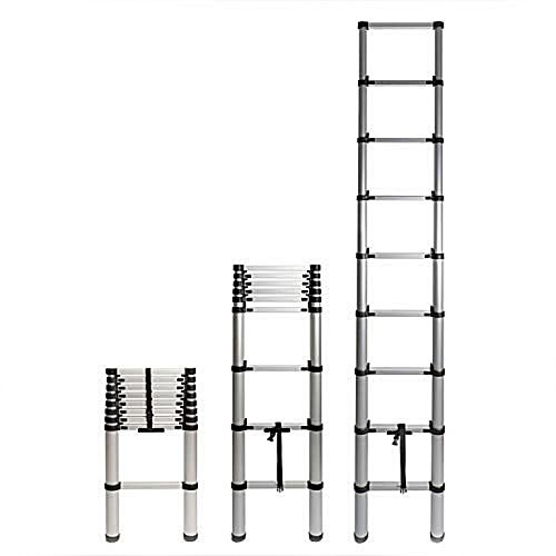 Garrett Wade Telescoping Extension Ladder