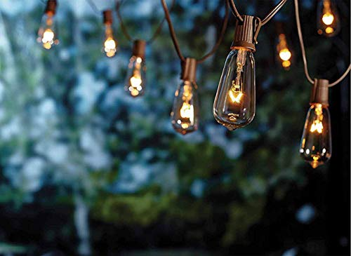 SkrLights 20Ft Edison String Lights, Set of 21 Glass Clear Bulbs ST40 Edison Style Bulb String Lights Garden/Backyard Party/Wedding Indoor Outdoor Patio String Lights(Plus 1 Extra Bulbs)-Brown Wire (Lights Cost Plus String)