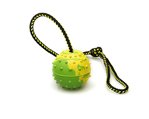 Dog Rubber Ball on Rope - K9 Training, Reward, Fetch - 2 1/4
