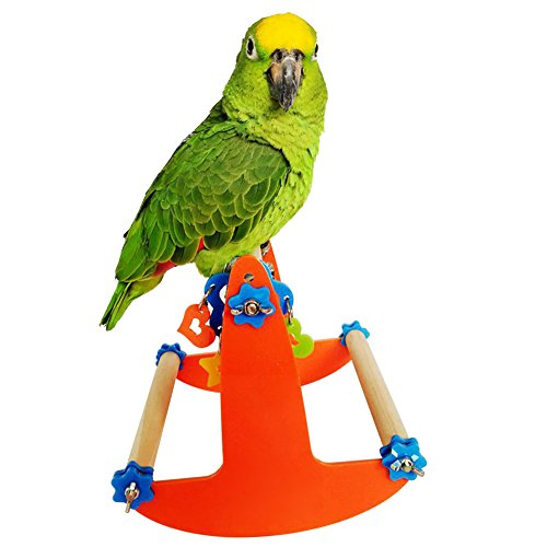 Wildgirl Parrot Acrylic Natural Wood Climbing Stand Toy Bird Hanging Swing Seesaw Rocking Chair by Wildgirl