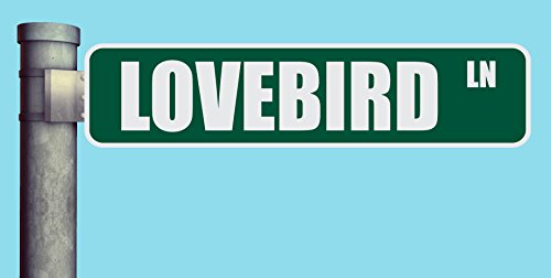 (LOVEBIRD LN STREET SIGN LANE HEAVY DUTY ALUMINUM ROAD SIGN 17