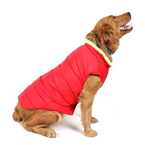 Animale domestico Bella abbastanza bella moda confortevole Nuovo modello autunno e inverno Lovely Bone Pattern Pet Dog Cotone reversibile Indumento Taglia  L, Busto  64-72cm, Collo  39-44cm convenient