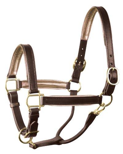 - Perri's Leather Metallic Padded Leather Halter, Horse, Havana/Platinum