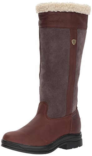 Ariat Women's Windermere H2O Work Boot, Dark Brown, 7.5 B US by Ariat