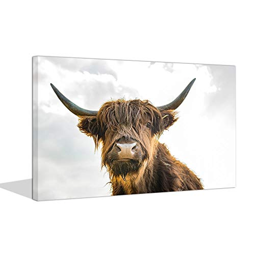 sechars - Animal Canvas Wall Art Close-up Highland Cattle with Long Horns Picture Print on Canvas Painting for Home Decor Modern Living Room Decorations,Framed Ready to Hang,24 x 36