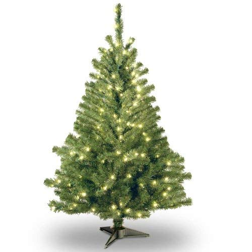 National Tree 4 Foot Kincaid Spruce Tree with 100 Clear Lights (KCDR-40LO-S)