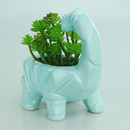 VanEnjoy 6 Inch Cute Cartoon Dinosaur Shape Ceramic Succulent Planter, Water Culture Hydroponics Bonsai Cactus Flower Pot,Air Plant Vase Holder Desktop Decorative Organizer Supersaurus, Blue