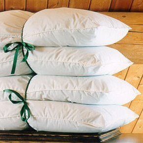 Organically Grown Alpaca Wool Medium Fill Pillow - 100% Organic Cotton Cover (Standard)