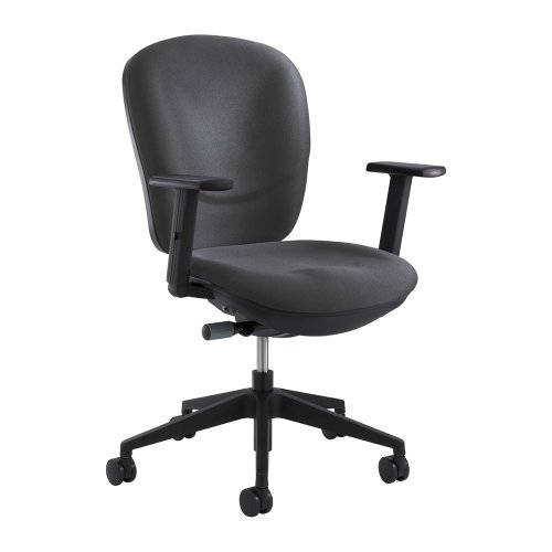 High-Back Rae Task Chair Color: Charcoal (Rae Task Chair)