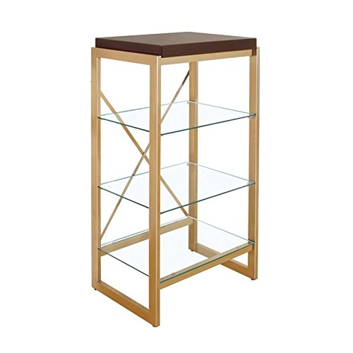 Furniture of America Ruptin 4 Shelf Metal Bookcase in Gold