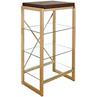 Furniture of America Ruptin 4 Shelf Metal Bookcase in Gold