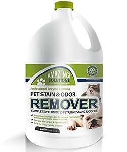 Amazon Com Amaziing Solutions Pet Odor Eliminator And