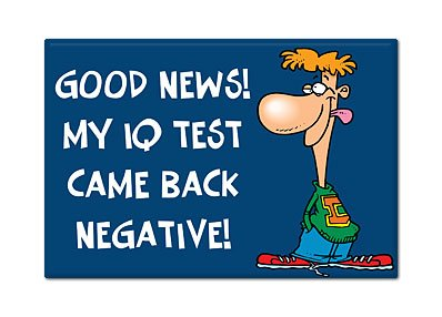 Amazon com: My IQ Test Came Back Negative Fridge Magnet
