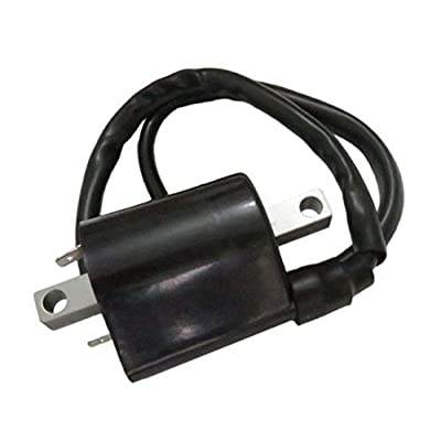 12V Ignition Coil Fits 4 Cycle Yamaha Golf Cart G2 G9 G11 Replace J38-82310-20-00 1985-1995: Automotive