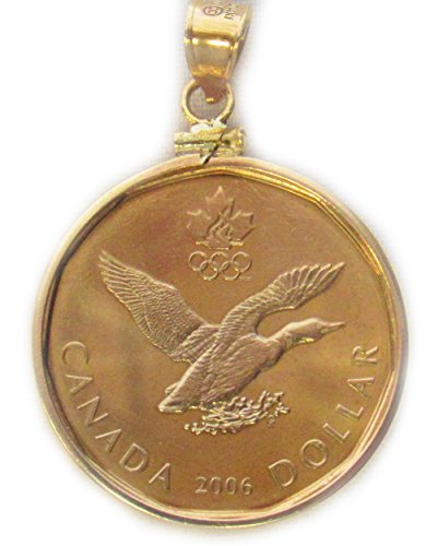 14k Gold Filled Canadian Loonie Coin Edge Coin Bezel Coin Pendant