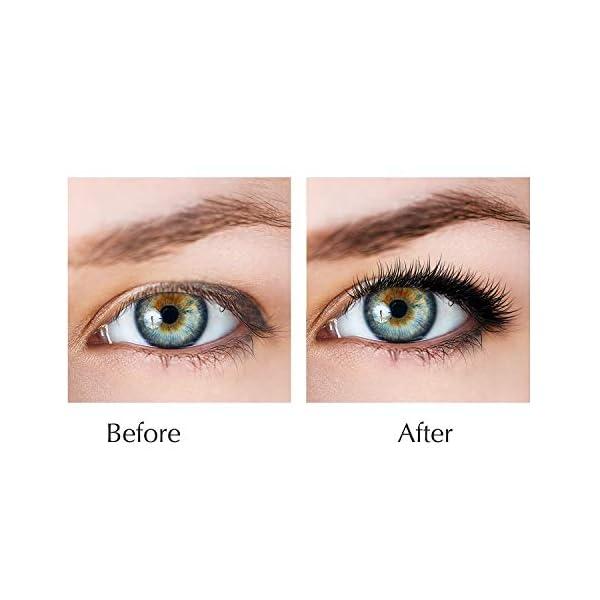 5cbc622aa6b Natural Extract FEG Eyelash Growth Serum Eyelash Enhancer for Longer,  Thicker, Fuller Eyelash
