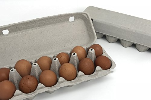 Pulp Egg Cartons, Blank Flattop Style Carton, 12-Egg, 100% Recyclable, Set of 12