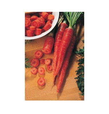 David's Garden Seeds Carrot Nutri-Red D2313PO (Red) 500 Open Pollinated Seeds