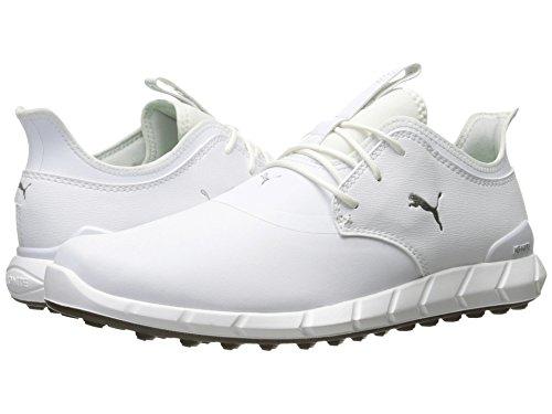 スクワイアラップアッパー[PUMA(プーマ)] メンズランニングシューズ?スニーカー?靴 Ignite Spikeless Pro