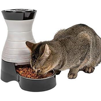 Pet Supplies : Healthy Pet Water Station, Medium : Pet
