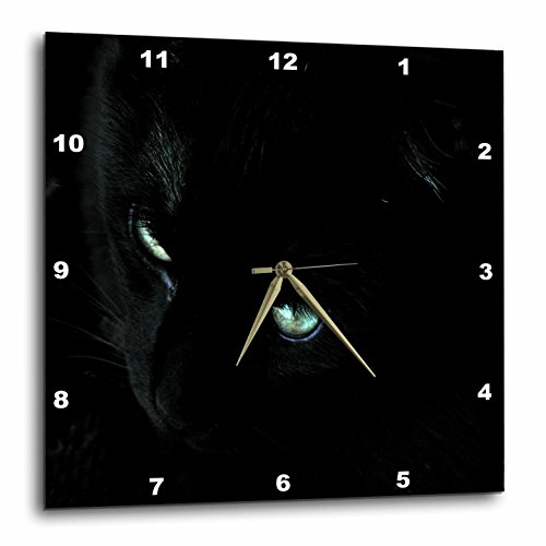 3dRose dpp_27310_3 Close Up of Black Cat-Wall Clock, 15 by 15-Inch Review