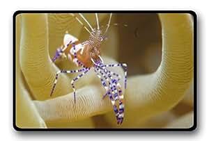 Sea Creature Undersea World Tropical Fish Coral Jellyfish fabric Doormat decorative doormat