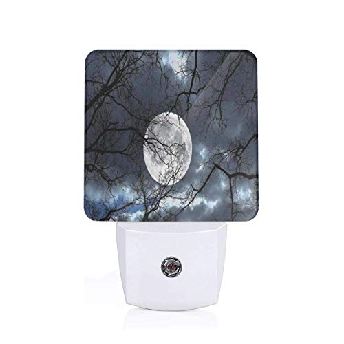 Colorful Plug in Night,Full Moon at Night in Forest Winter Time Mystical Dramatic Days Lunar Photo,Auto Sensor LED Dusk to Dawn Night Light Plug in Indoor for Childs Adults (Light Transformer Lunar)