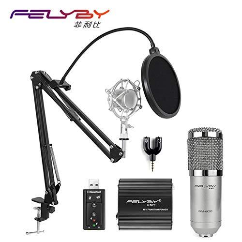 FELYBY 3.5ミリメートルのセットを記録したコンピュータオーディオカラオケmikrofonのスタジオのための専門BM 800コンデンサー:米国、スタイル1   B07K2K14BK