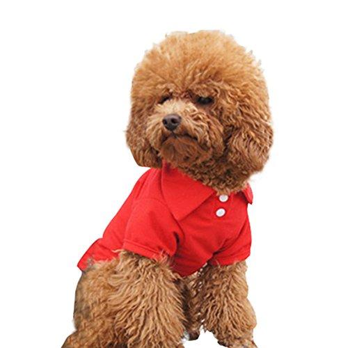 PanDaDa Pet Doggy Apparel Classic Small Dog Polo T-Shirt Puppy Tee Shirt - Asian Polo Us