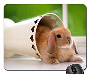 Cute rabbit Mouse Pad, Mousepad (Rodents Mouse Pad)