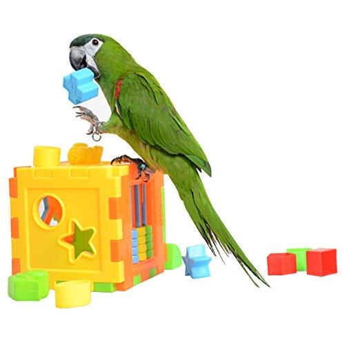 Hanukkah Blocks (Ozzptuu Plastic Training Block Toy for Birds Puzzles Educational Colorful Toys Intelligence Development Interactive Parrot Cage Toy)