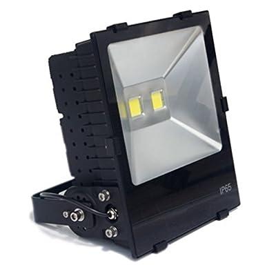 Zesol 150W 12V AC or DC Warm White LED Flood light High Power Waterproof Outdoor Lights Black Case